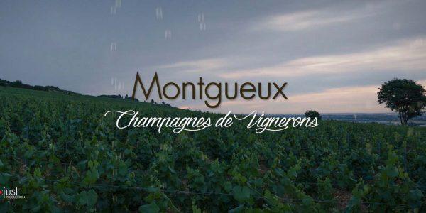 Montgueux_Teaser-studio-og-troyes