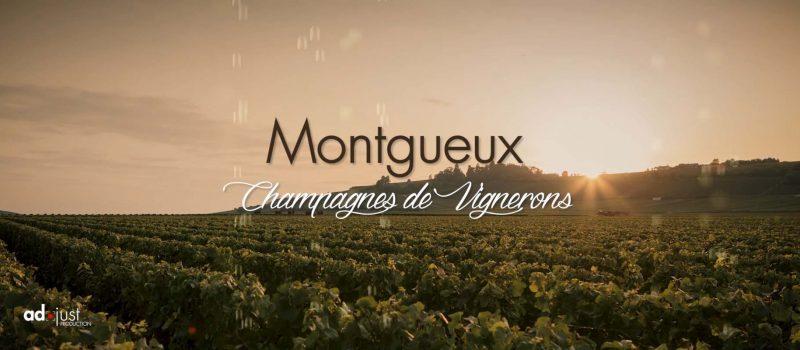 Vignoble-de-Montgueux-studio-og-troyes